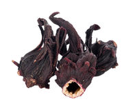 Dried roselle isolated on the white background. Closeup Dried roselle isolated on the white background Royalty Free Stock Image