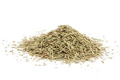Dried rosemary Stock Image