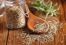 Dried rosemary on the spoon Stock Photos
