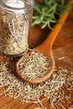 Dried rosemary on the spoon Stock Images