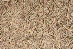 Dried Rosemary Stock Photos