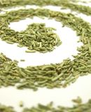 Dried Rosemary Swirl, Vertical Royalty Free Stock Photos