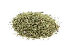 Dried rosemary Stock Images