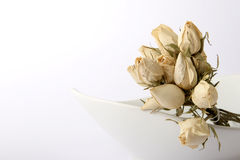 Dried Roses. See some white dried roses in a white dish on white background stock image
