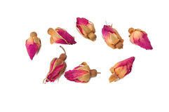 Dried roses. Some pretty dry rose buds royalty free stock image