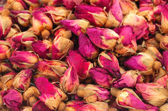 Dried roses. Some pretty dry rose buds stock photos