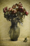 Dried roses. Photo based illustration of a bouquet of dying roses Stock Images
