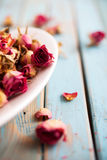 Dried roses Stock Photos