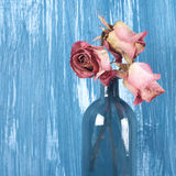 Dried roses in bottle Royalty Free Stock Photos