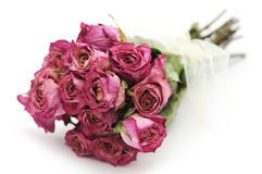 Dried roses bouquet Royalty Free Stock Photography