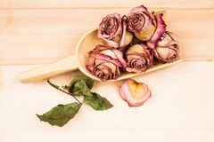 Dried roses and buds with wooden objects Stock Image