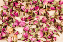 Dried roses and buds Royalty Free Stock Photography