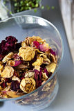Dried roses Stock Images