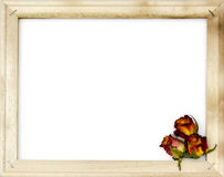 Dried roses in old picture frame Stock Images