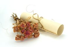 Dried roses and scroll. Dried flowers and scroll lying together on white background Royalty Free Stock Photos
