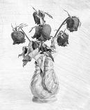 Dried roses in a vase Effect black and white Stock Photo