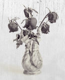 Dried roses in a vase Effect black and white Stock Photos
