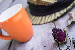 Dried roses on wooden Stock Image