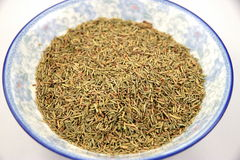 Dried Rosmery Stock Photo
