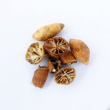 Dried Rotten Limes Stock Photos