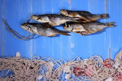 Dried rudd fish and fishing net on blue background Stock Images