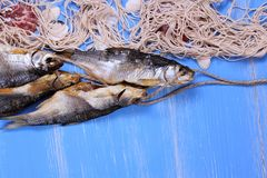 Dried rudd fish and fishing net on blue background Stock Image