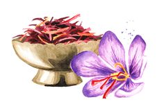 Dried saffron spice  in bowl and a flower. Watercolor hand drawn illustration, isolated on white background.  stock illustration