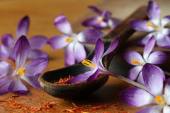 Dried saffron spice and crocus flowers Royalty Free Stock Photos