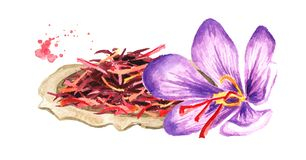 Dried saffron spice on the plate and a flower. Watercolor hand drawn illustration, isolated on white background.  vector illustration