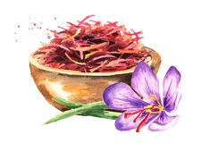 Dried saffron spice  in wood bowl and a flower. Watercolor hand drawn illustration, isolated on white background.  stock illustration