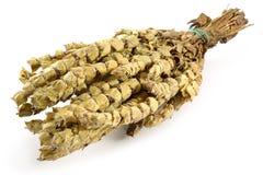 Dried Sage Stock Image