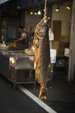 Dried salmon fish Stock Image