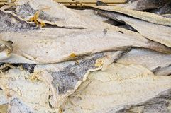 Dried Salt Cod Royalty Free Stock Photos