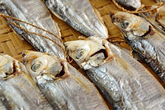 Dried salt Fish Royalty Free Stock Photos
