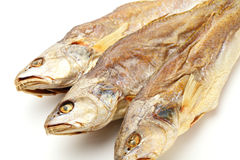 Dried salt Fish Stock Photography