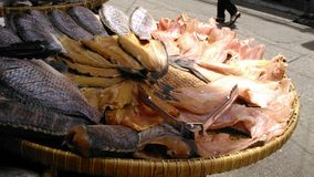 Dried salt fishes Stock Photos