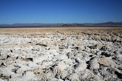 Dried salt mud flats. In the desert causing white shell like forms and mountains in the background Royalty Free Stock Photography
