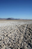 Dried salt mud flats. In the desert causing white shell like forms and mountains in the background with tire tracks Royalty Free Stock Photos