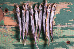 Dried salted capelin Stock Photo