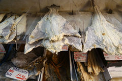 Dried salted cod on sale in Lisbon, Portugal Royalty Free Stock Images