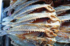 Dried Salted Fish Royalty Free Stock Photos