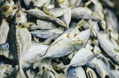 Dried salted fish easily can be found at fresh market Royalty Free Stock Images
