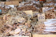 Dried salted fish at the street market Stock Photography