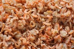 Dried salted prawn Stock Photos