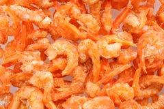 Dried salted prawn Stock Image