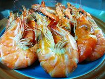 Dried Salted Prawn-Shrimp Royalty Free Stock Images