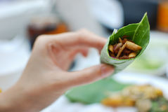 The dried salted prawn with thai dressed salad Royalty Free Stock Photos