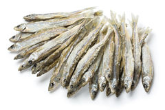Dried salted sprat Royalty Free Stock Images