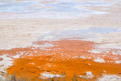 Dried saltworks in orange and white textures Stock Image