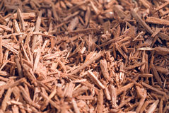 Dried sandalwood Royalty Free Stock Photo